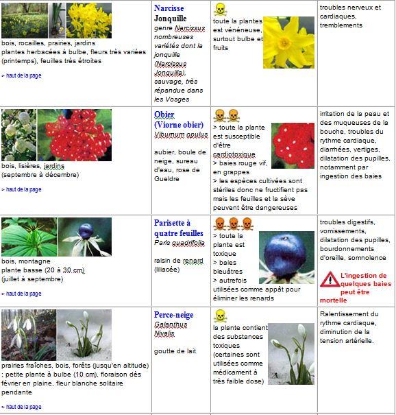 plantes15